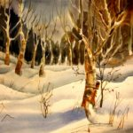 Winter - Birch Forest